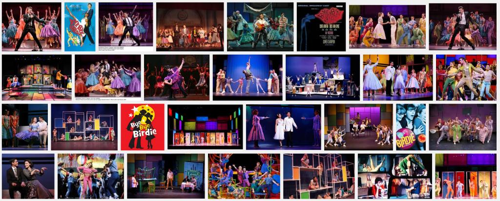 Bye Bye Birdie Broadway Costumes